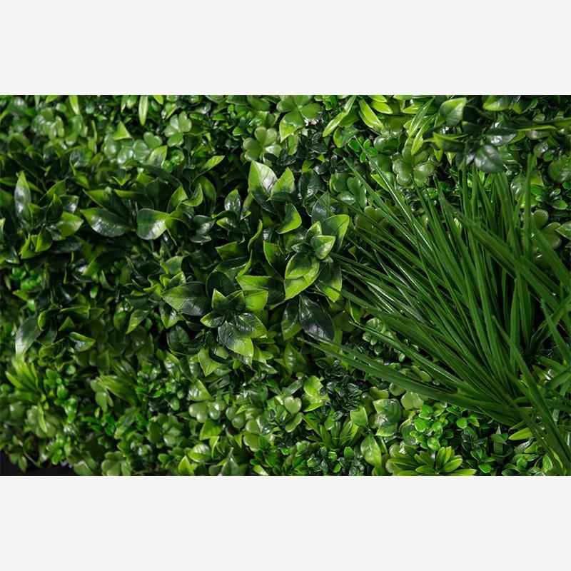 Ecuador Vertical Garden