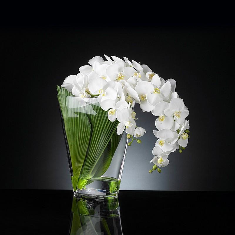 Vase Phaleno Cascade by VG